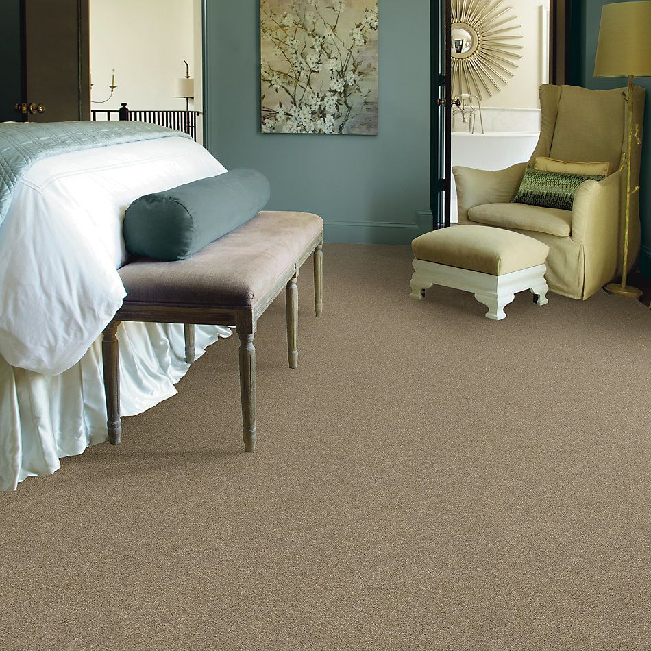 Shaw Floors SFA Fyc Ns Blue Net Honey Tea (s) 750S_5E020