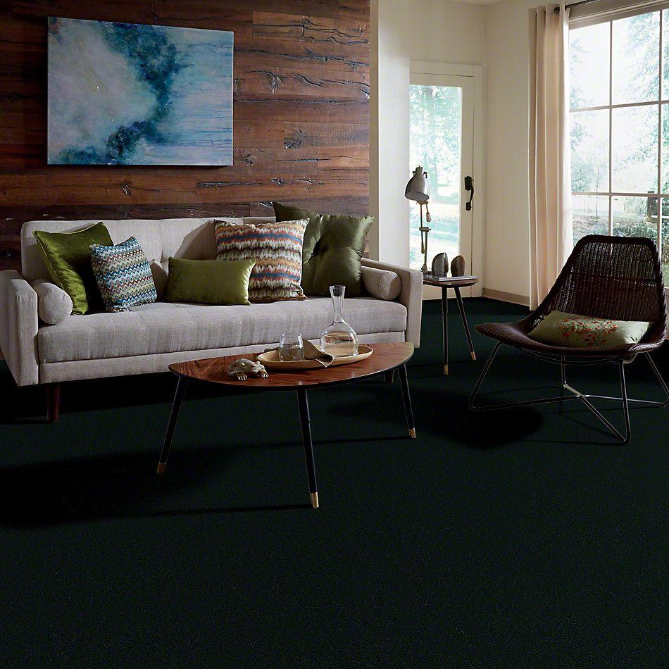 Philadelphia Commercial Emphatic 36 Mountain Pine 79366_50179