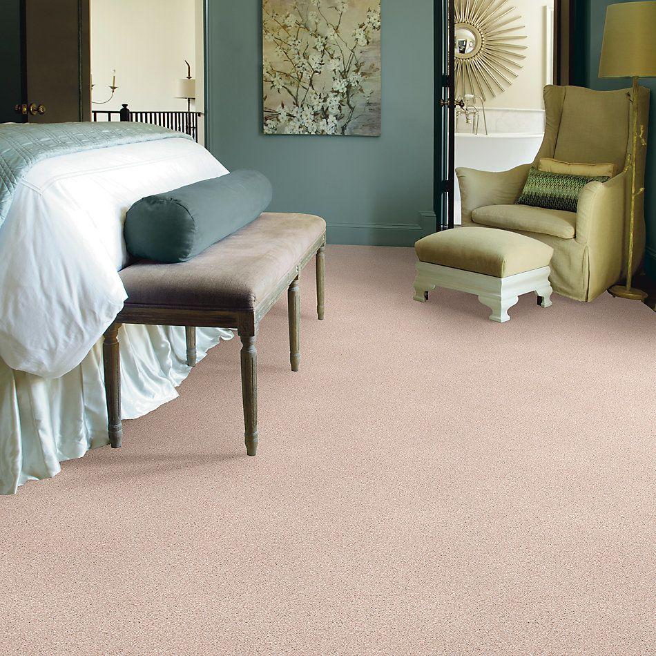 Shaw Floors SFA Fyc Tt II Net Soft Lullaby (t) 801T_5E022