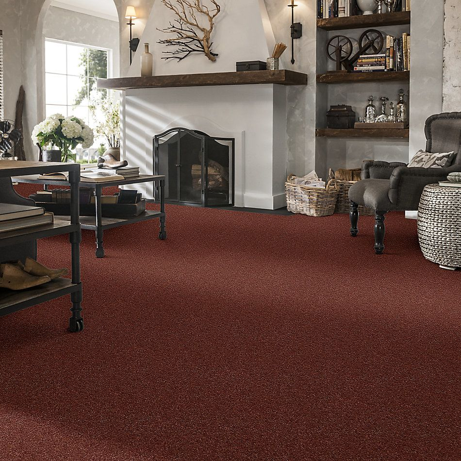 Shaw Floors SFA Fyc Ns I Net Serene Sunset (s) 804S_5E018