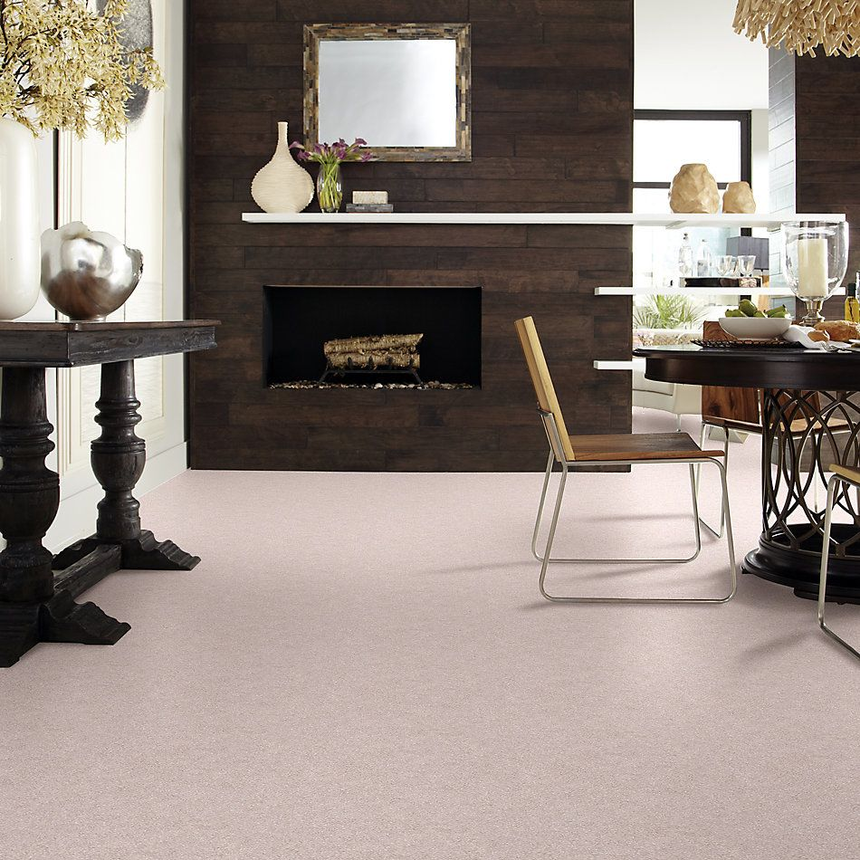 Shaw Floors Value Collections Fyc Ns I Net Evening In Paris (s) 900S_5E018