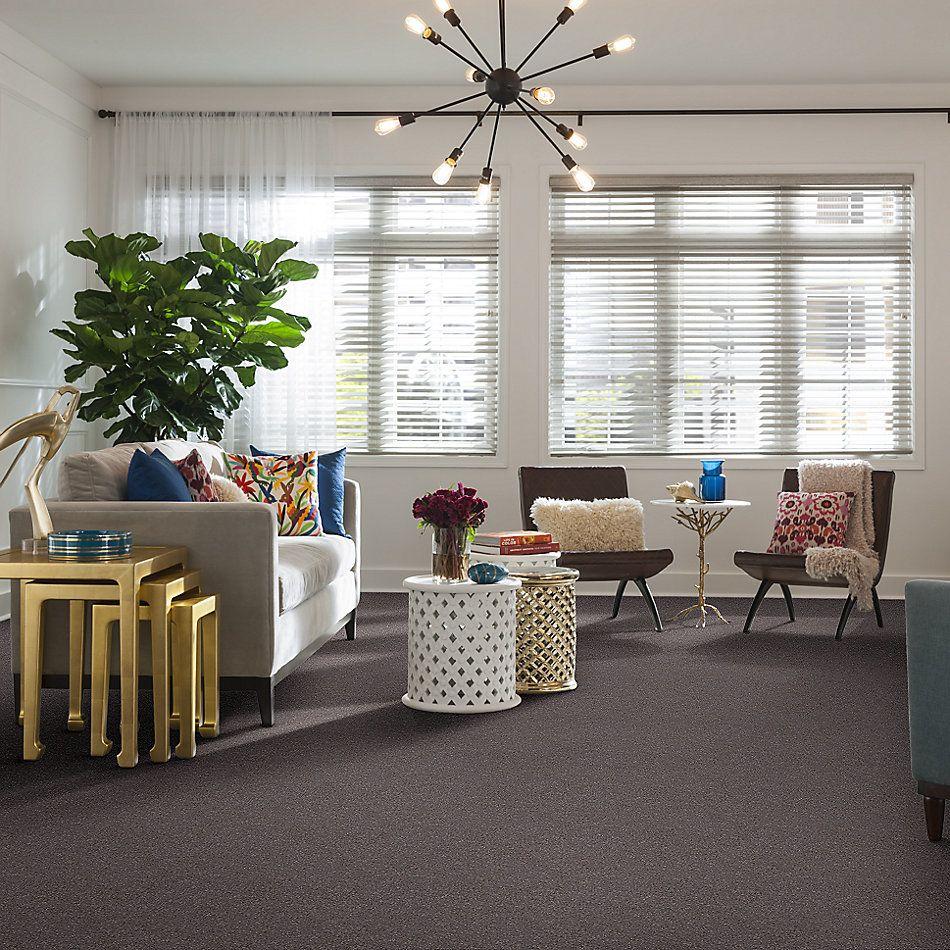 Shaw Floors SFA Fyc Ns Blue Net Lilac Field (s) 901S_5E020
