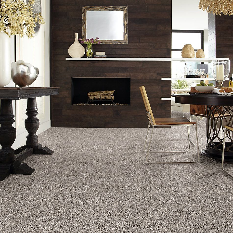 Shaw Floors Value Collections Back At It Net Cosmic Leather 98113_E9659