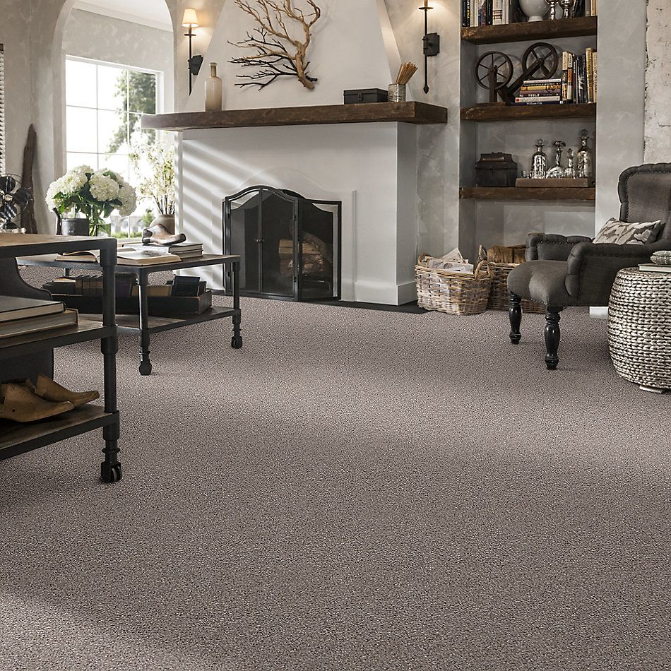 Shaw Floors Simply The Best Back At It Muted Gray 98510_E9498