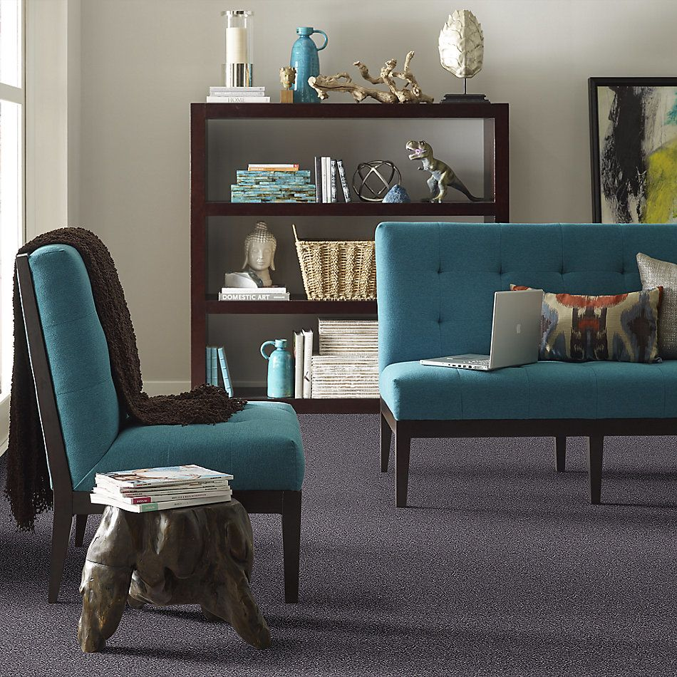 Shaw Floors Value Collections Back At It Net Night Sky 98511_E9659