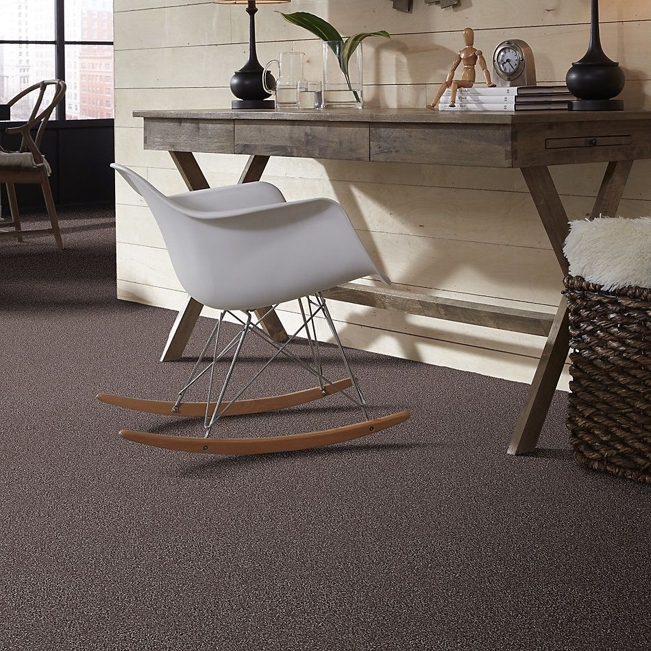 Shaw Floors Value Collections Connect Iv Dakota 98524_E9834