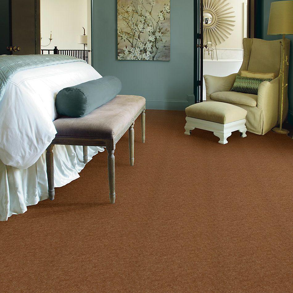 Shaw Floors SFA Royal Classic Birch Frost 98780_T1898
