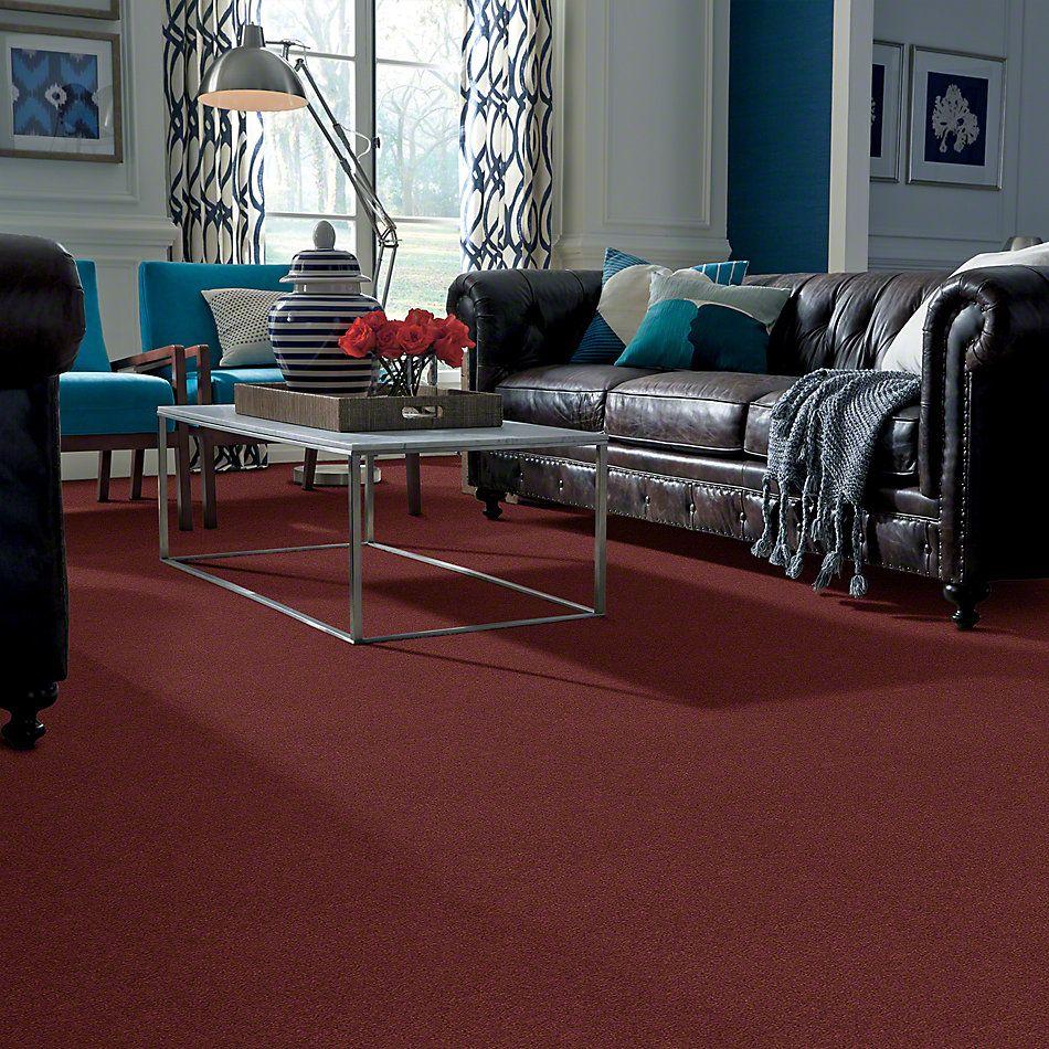 Shaw Floors Property Solutions Showdown Cordovan 98841_HF498