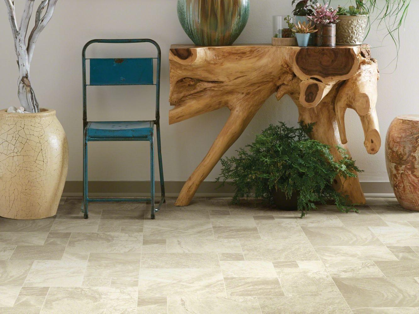 Shaw Floors Resilient Residential Holden Sardis 00112_AR611