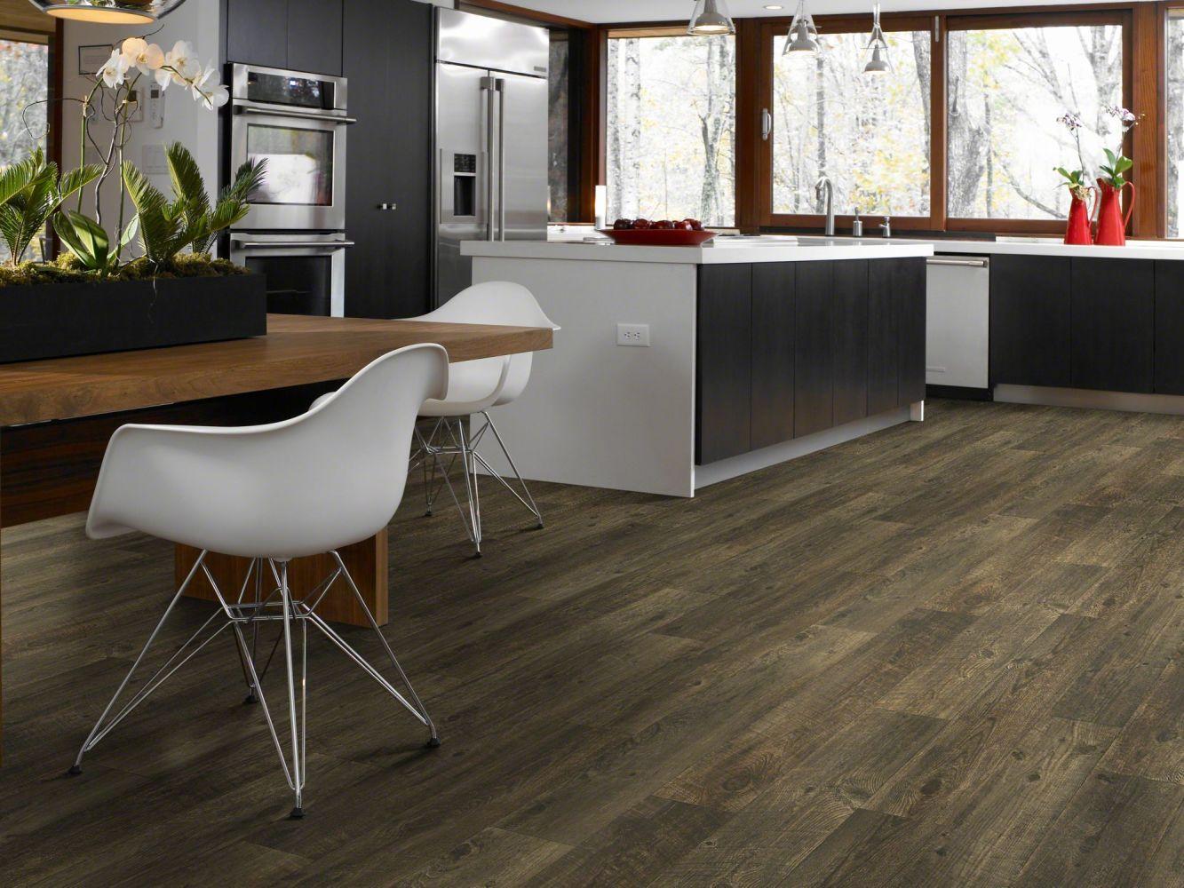 Shaw Floors Resilient Residential Henderson Split Rail 00709_AR613