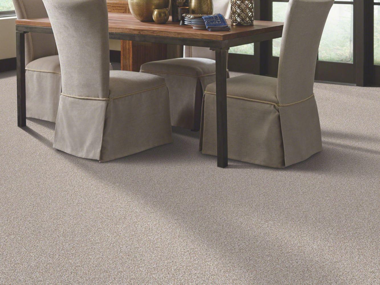 Shaw Floors Caress By Shaw Delicate Distinction Classic I Breton 0140B_BCC19