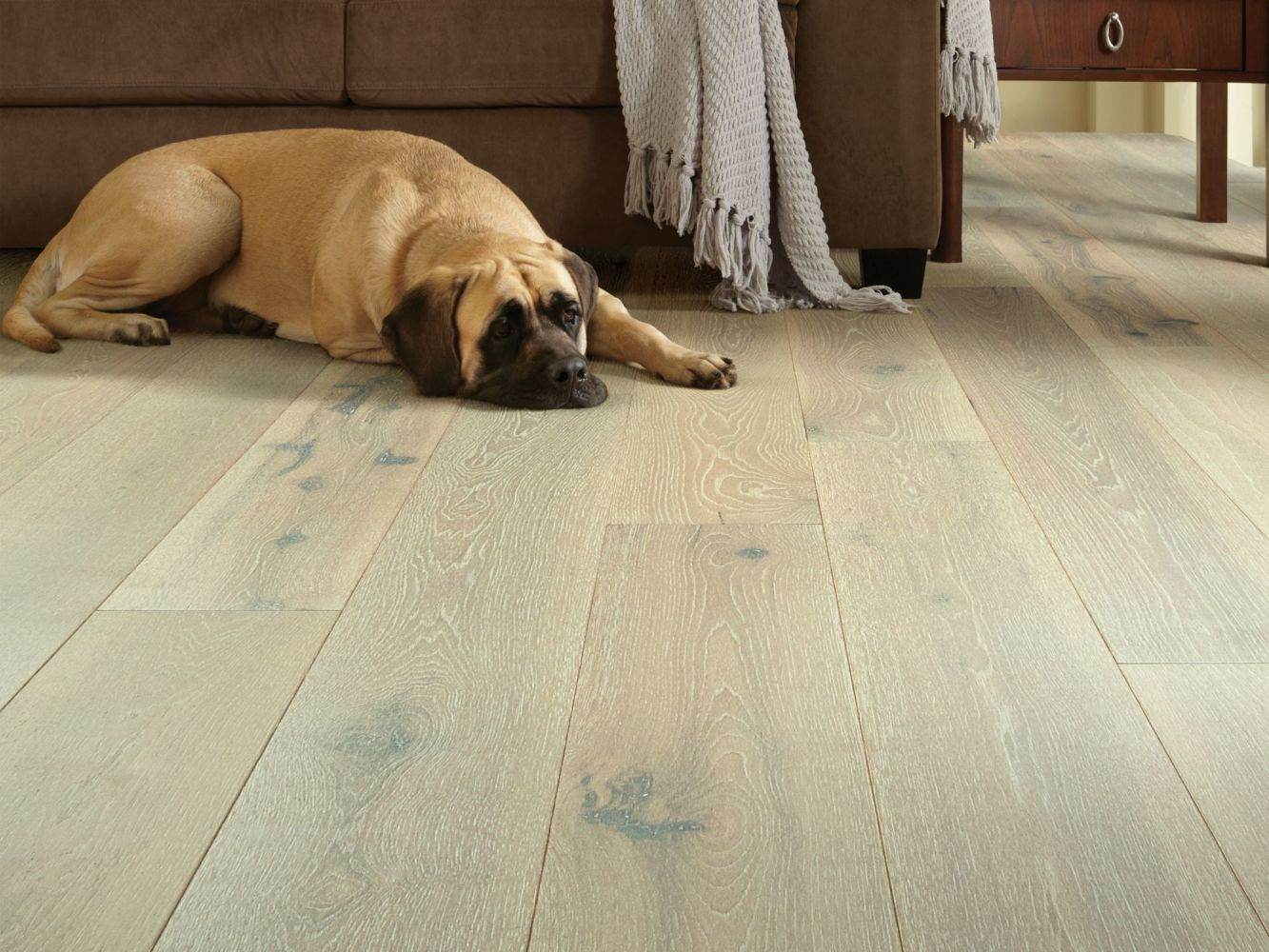 Shaw Floors Floorte Exquisite Warm Hickory 01052_CWFW1