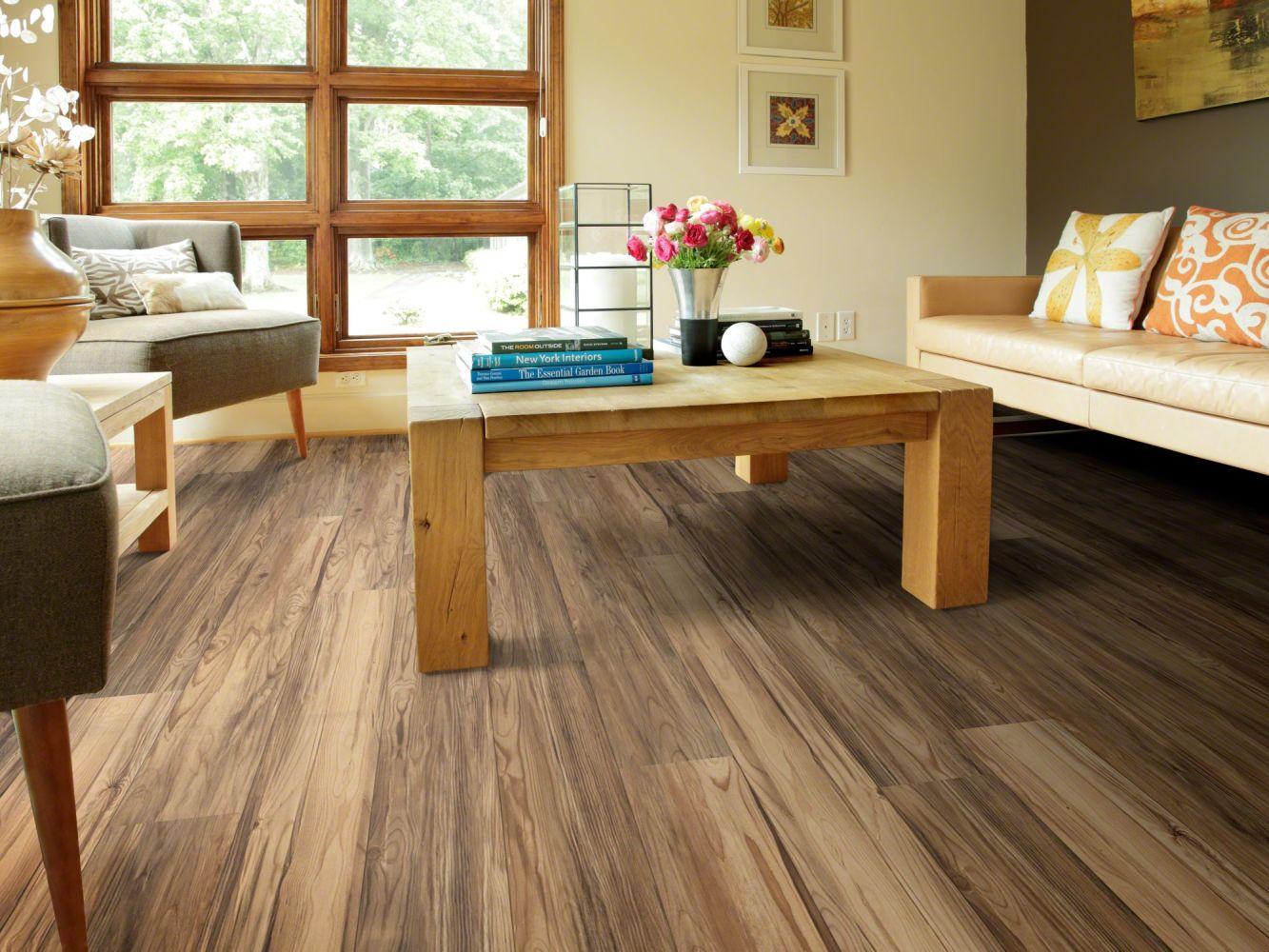 Shaw Floors Dr Horton Arabesque Pla + Caplone 00676_DR013