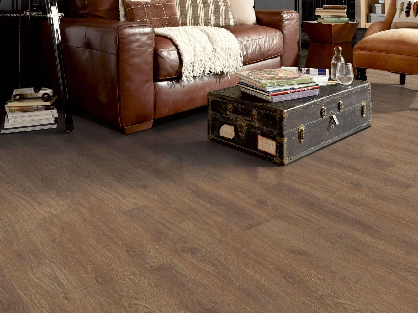 Shaw Floors Dr Horton Ballantyne Plus Click Boardwalk 07088_DR036