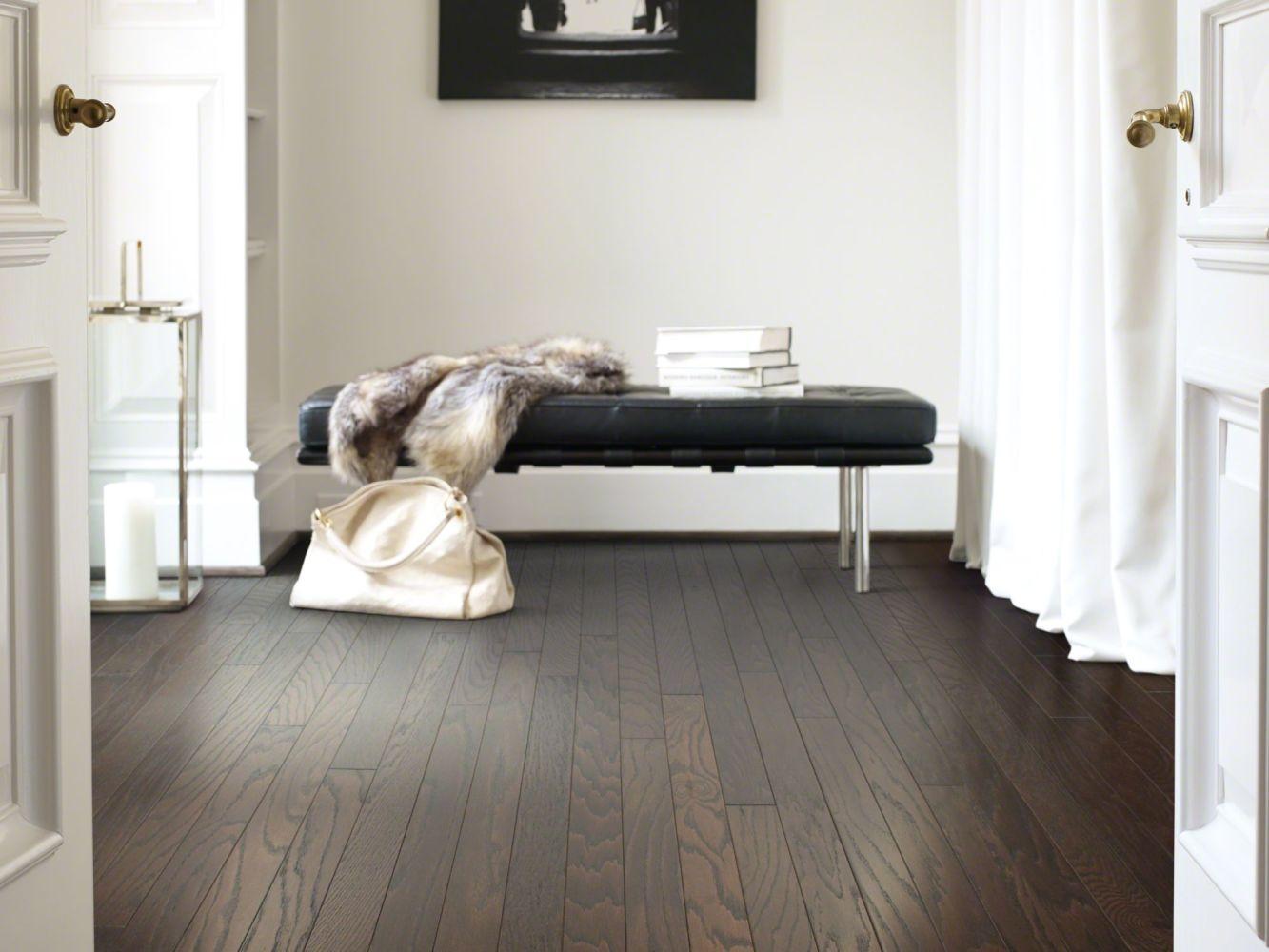 Shaw Floors Dr Horton Ann Arbor 3.25 Chocolate 07011_DR667