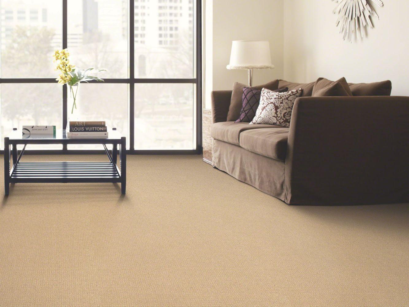 Shaw Floors Breakthrough Winter White 00100_E0529