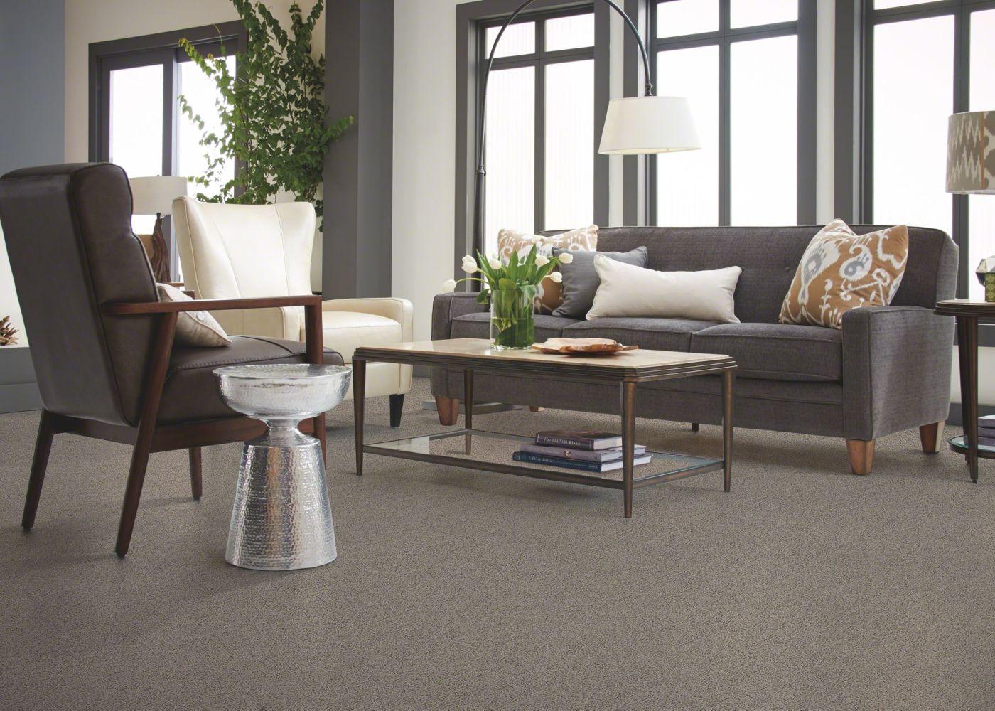 Shaw Floors My Choice I Rocky Coast 00750_E0650