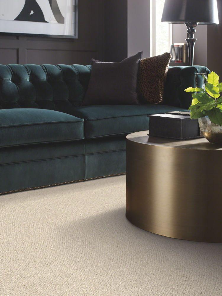 Shaw Floors Sensible Now Alabaster 00176_E9720