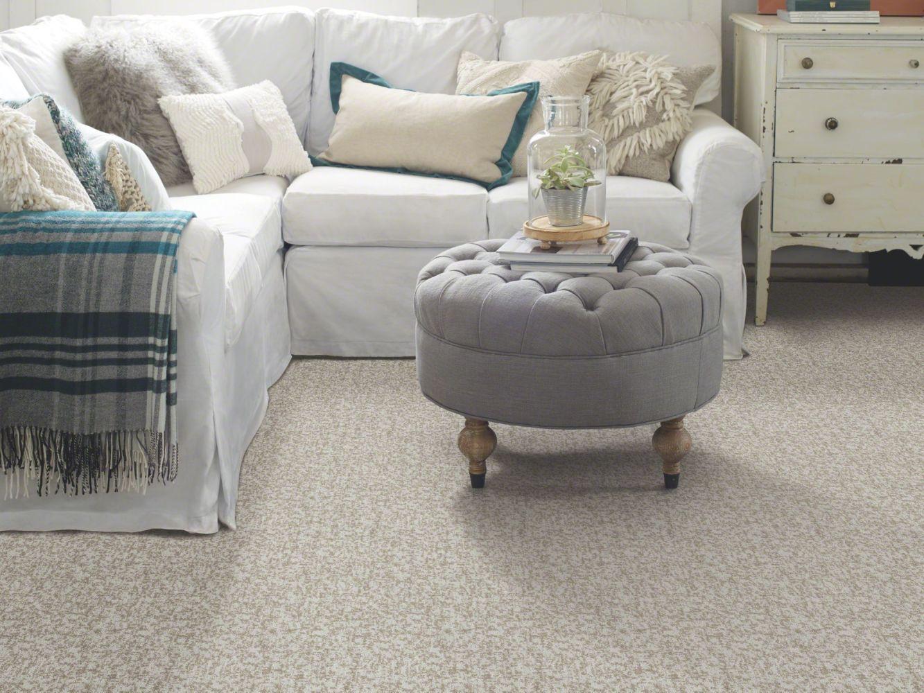 Shaw Floors Bellera Make Your Mark Net Nickel 00510_E9792
