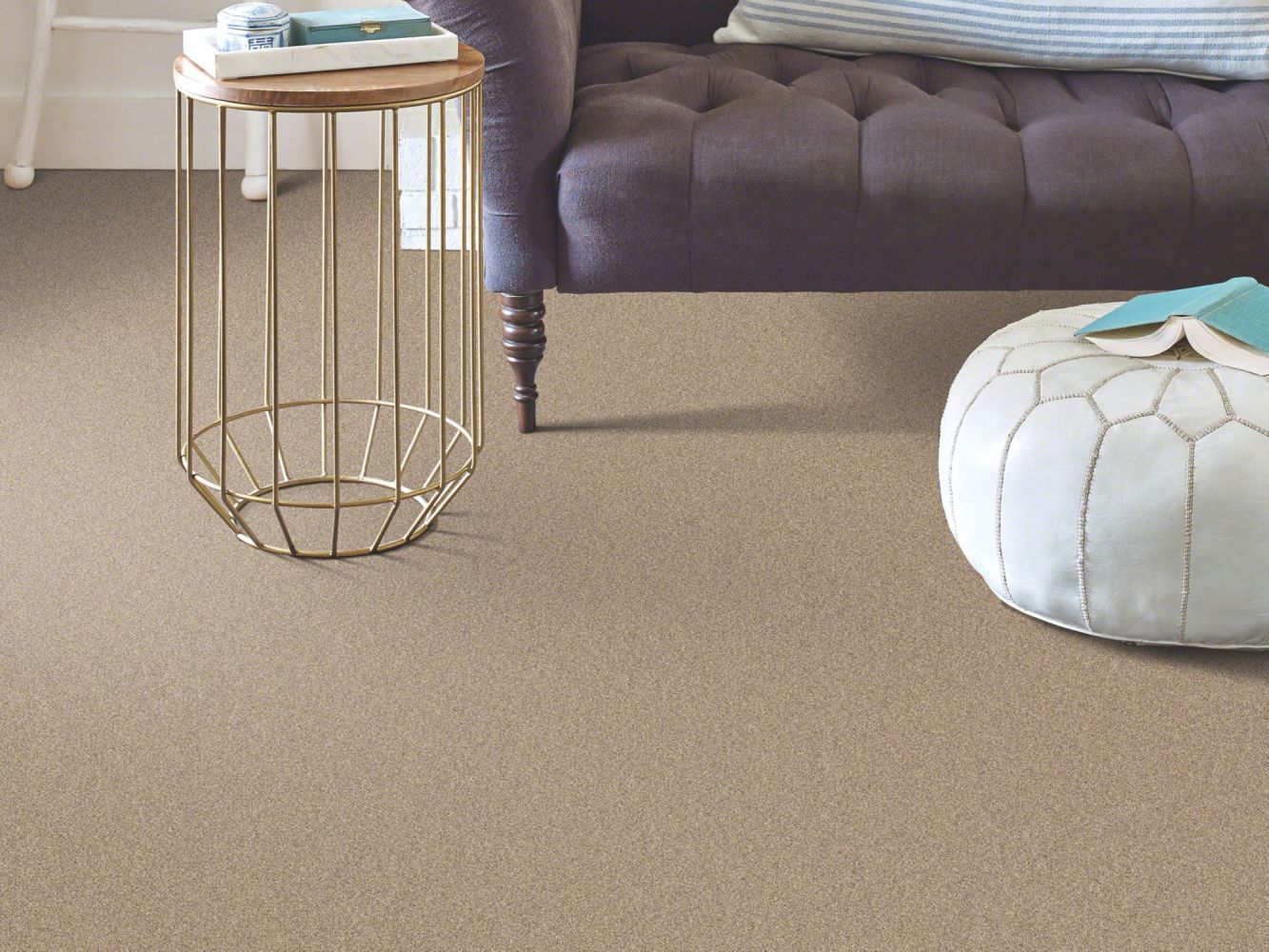 Shaw Floors Momentum II Canyon Buff 700S_E9968