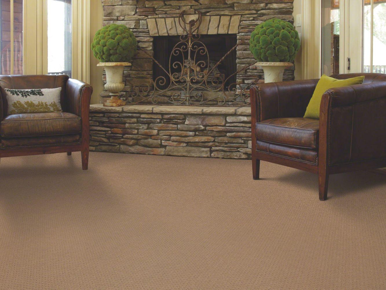 Shaw Floors SFA In Savannah Field Stone 00701_EA024