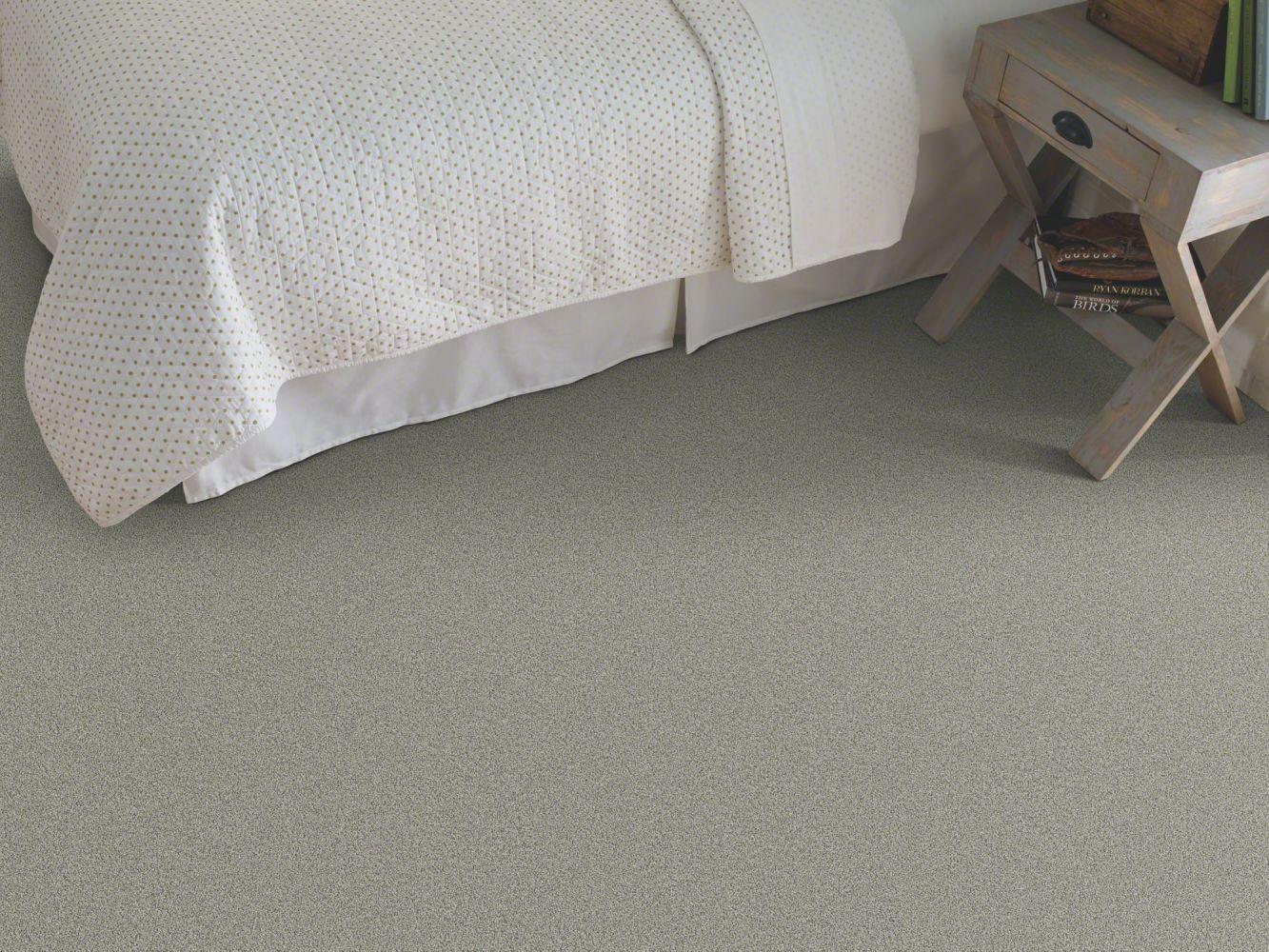Shaw Floors Anso Colorwall Designer Twist Platinum (s) Fossil 00541_EA091