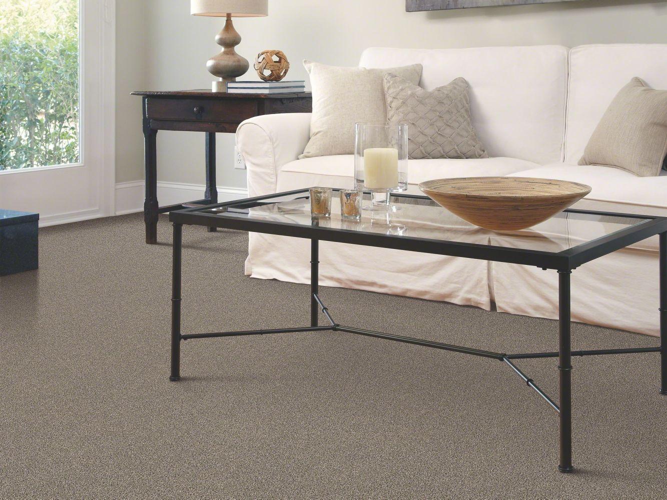 Shaw Floors SFA Inspiring Silver Sage 00310_EA508
