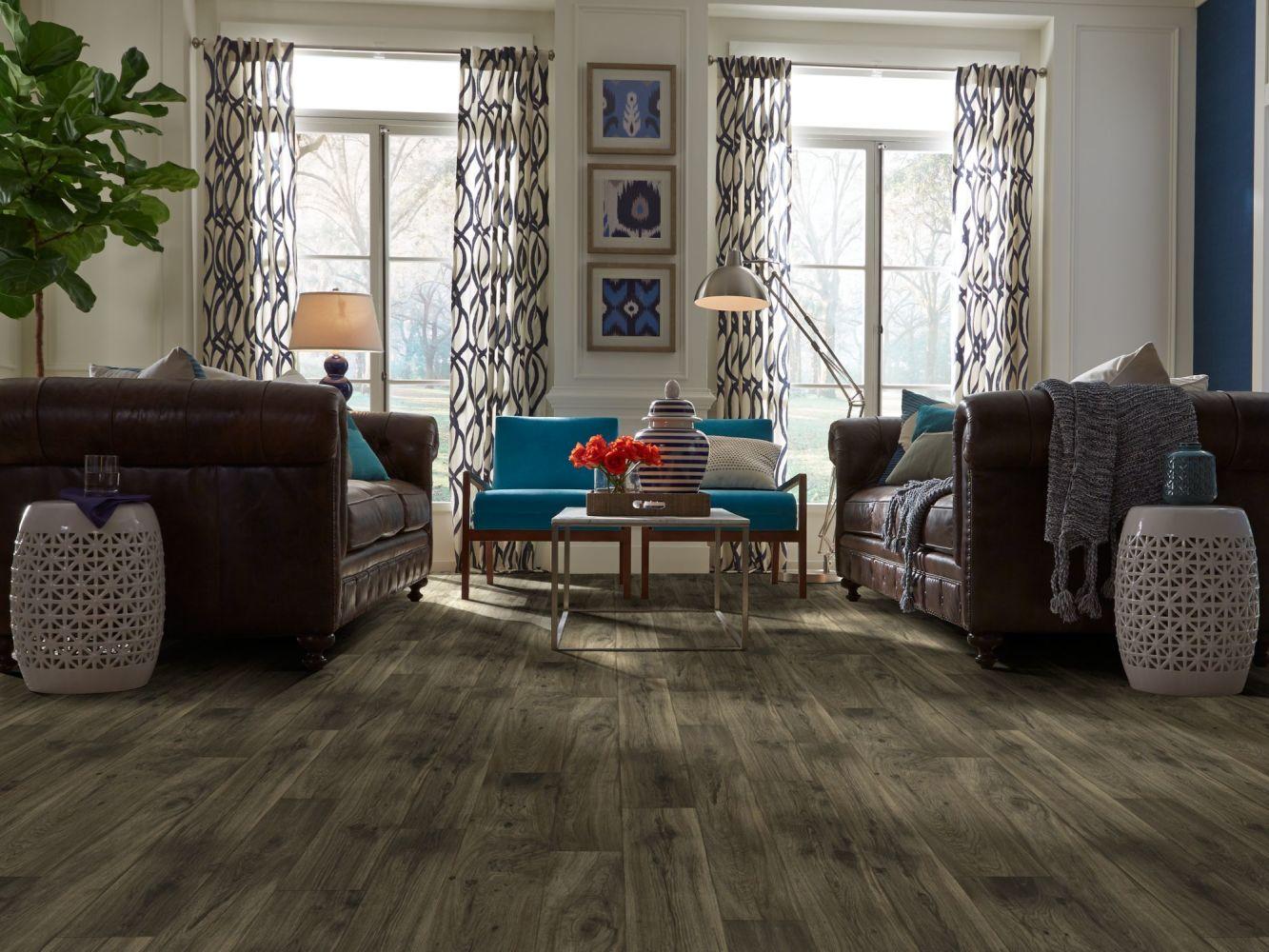 Shaw Floors Resilient Residential Weber Helens 00507_FR585