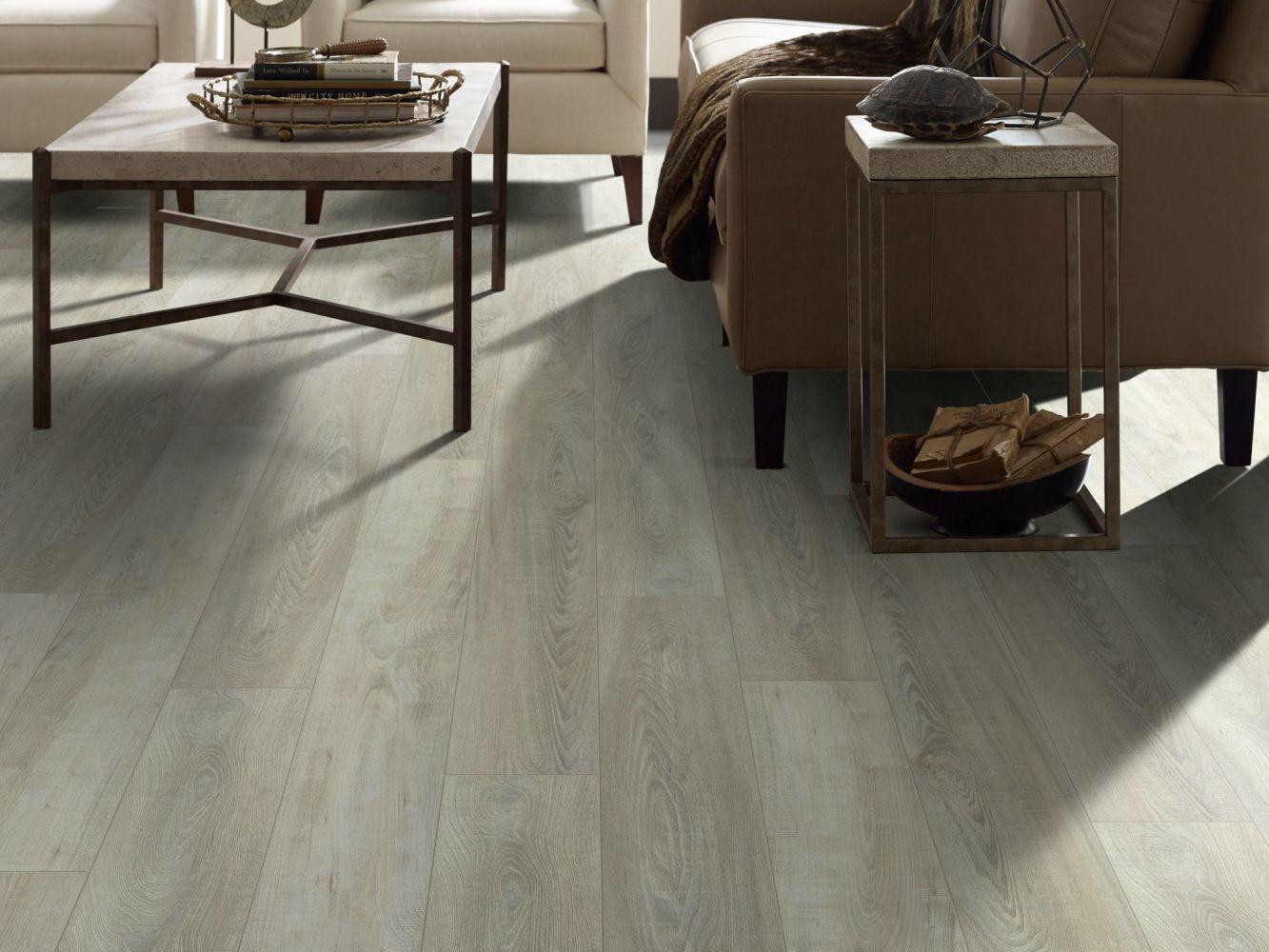 Shaw Floors Resilient Residential Virginia Trail HD Plus Tufo 00589_FR614