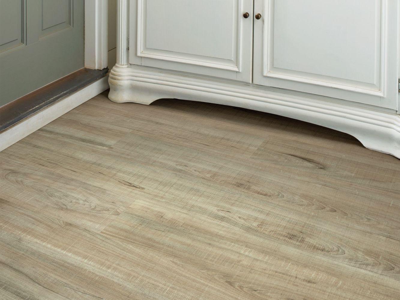 Shaw Floors Travera Plus 20 Chatter Oak 00295_FR622