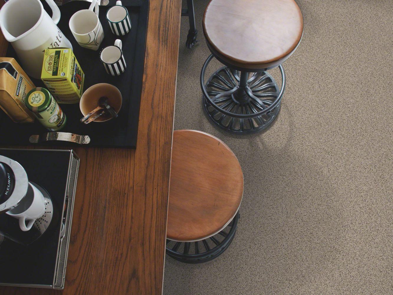Shaw Floors Nfa/Apg Detailed Artistry I Bridge Way 00174_NA328