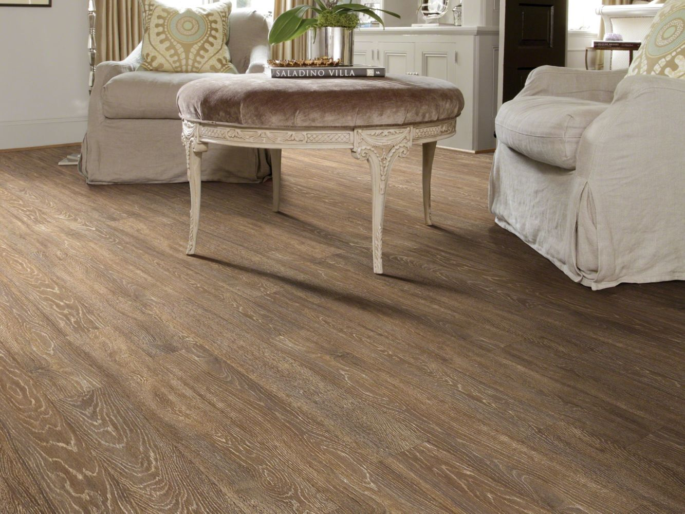 Shaw Floors SFA Belleview Chablis 00320_SA564