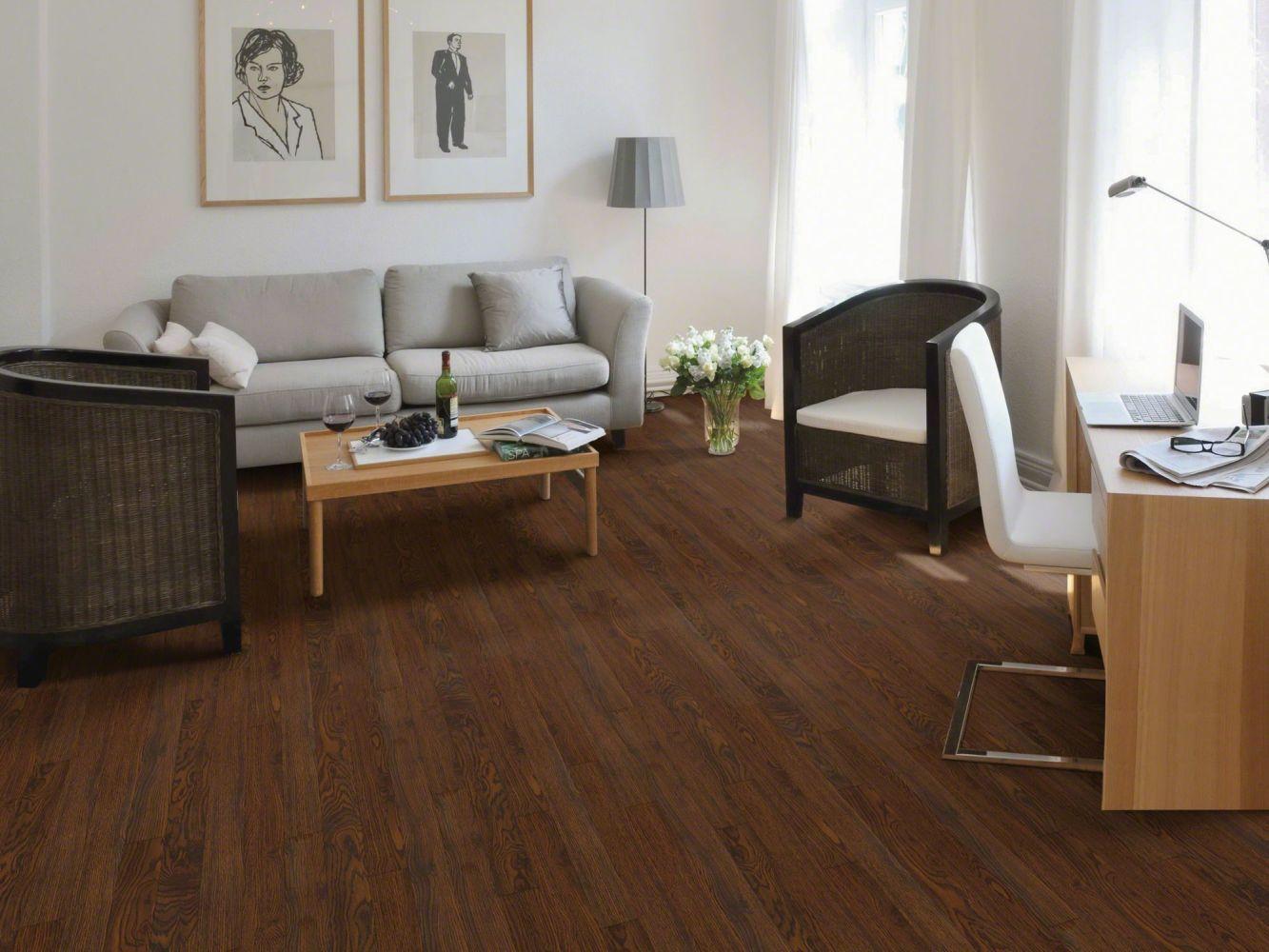 Shaw Floors SFA Piedmont Canyon 00711_SA572