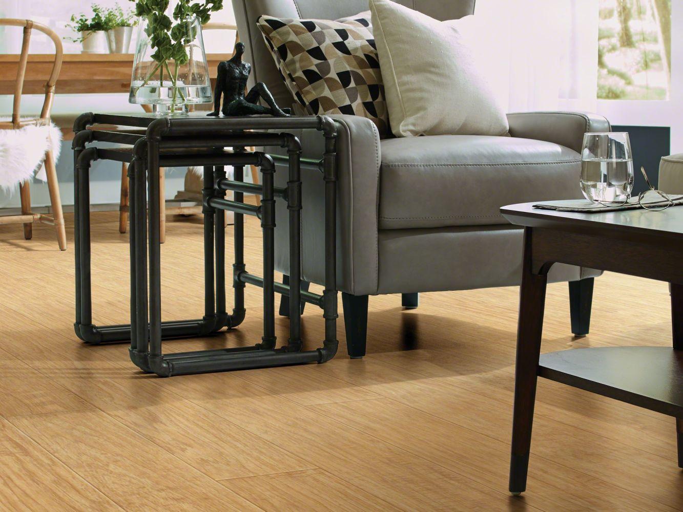 Shaw Floors Vinyl Residential Plateau Trailblazer 00233_SA605
