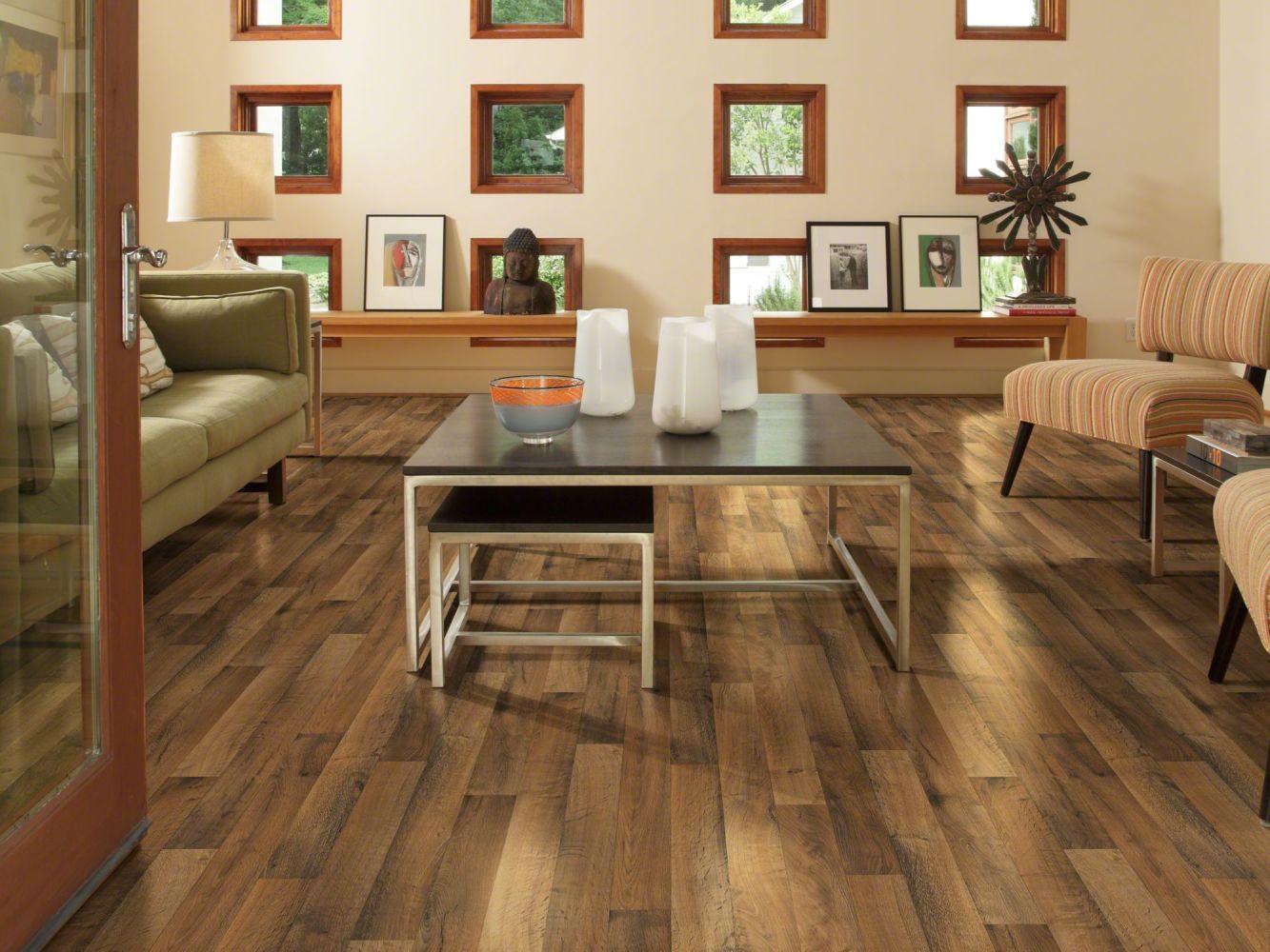 Shaw Floors Resilient Residential City Park Mezzanine 00549_SA627