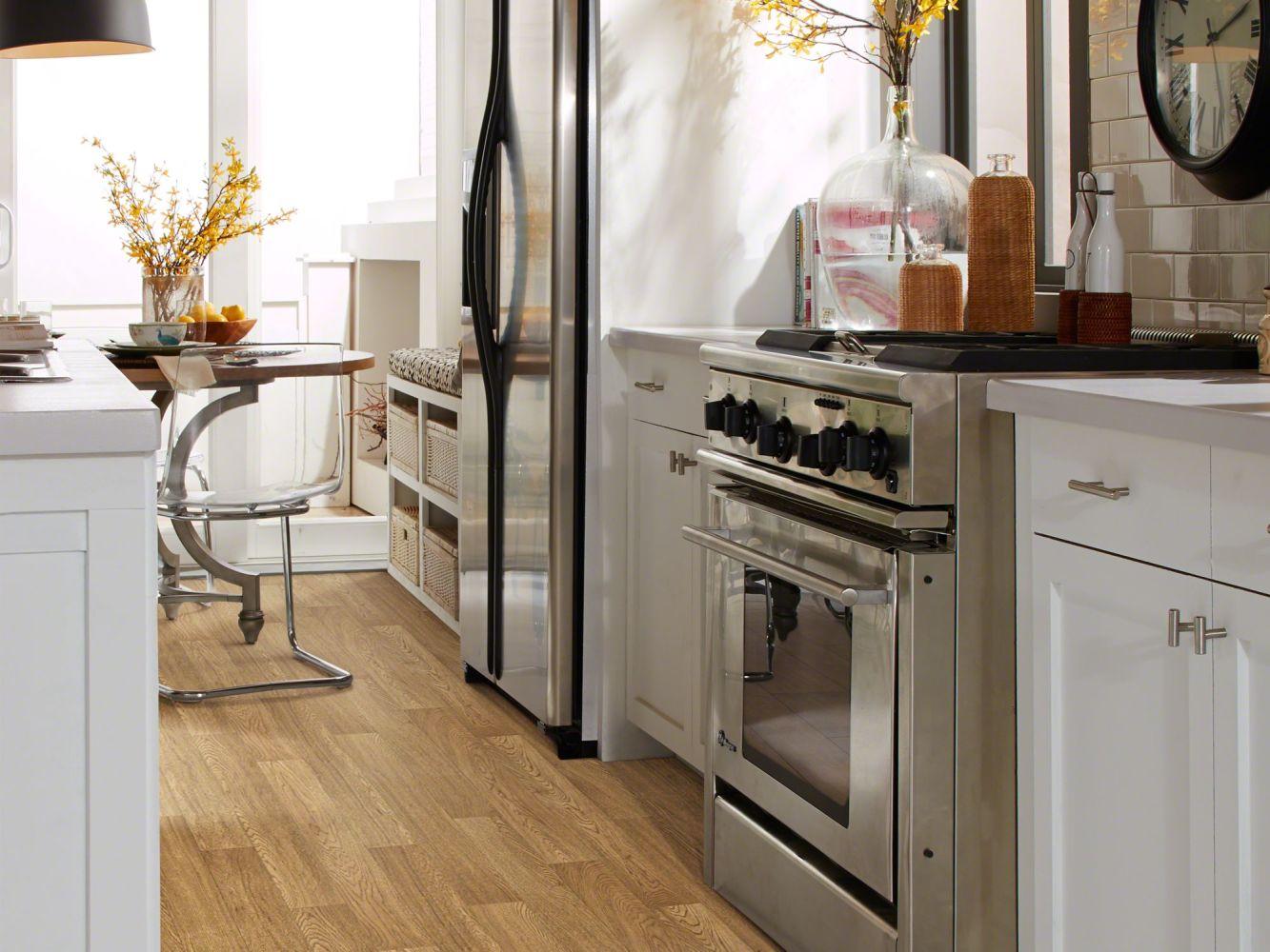 Shaw Floors Resilient Residential Vallejo Jenner 00217_SA632