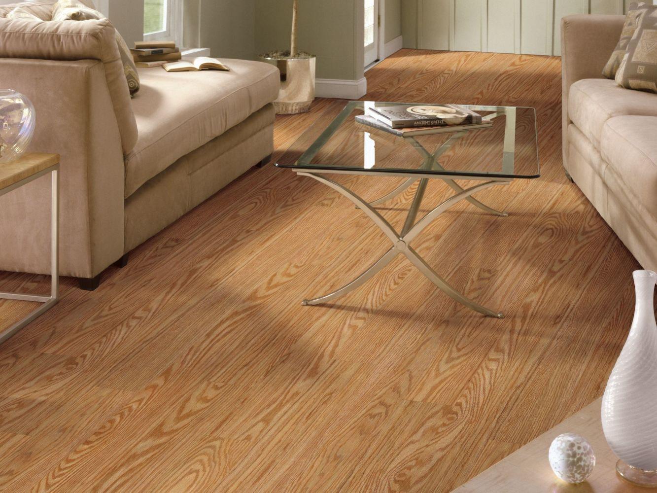Shaw Floors Resilient Property Solutions Cameron Pl Click Dutch 00220_VE181