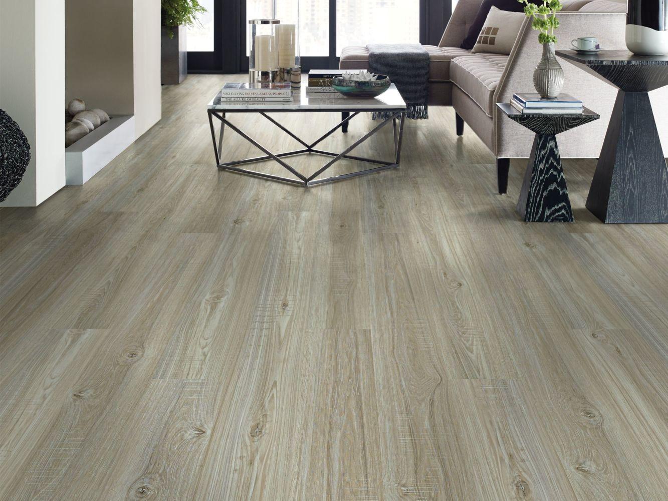 Shaw Floors Vinyl Property Solutions Presto Plus Washed Oak 00509_VE284