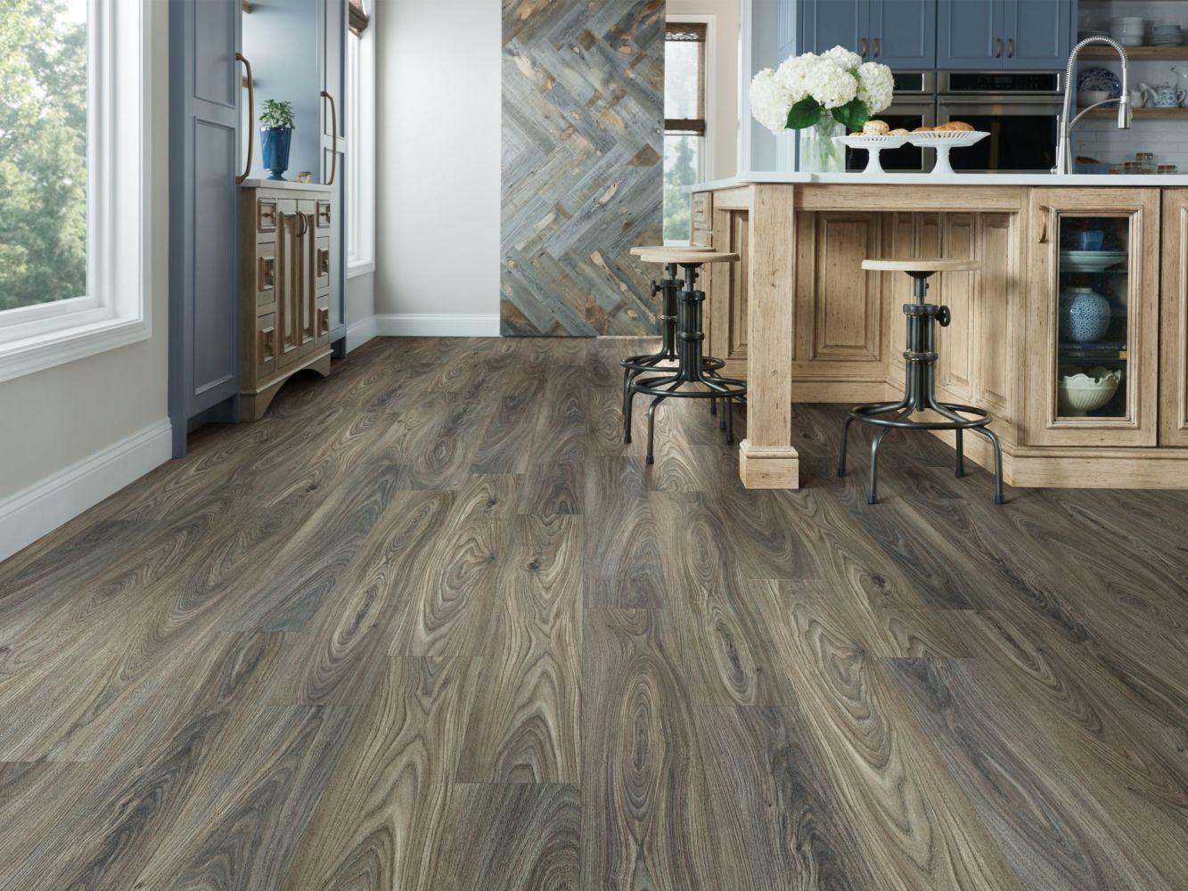 Shaw Floors Resilient Property Solutions Brio Plus Dark Elm 00915_VE285