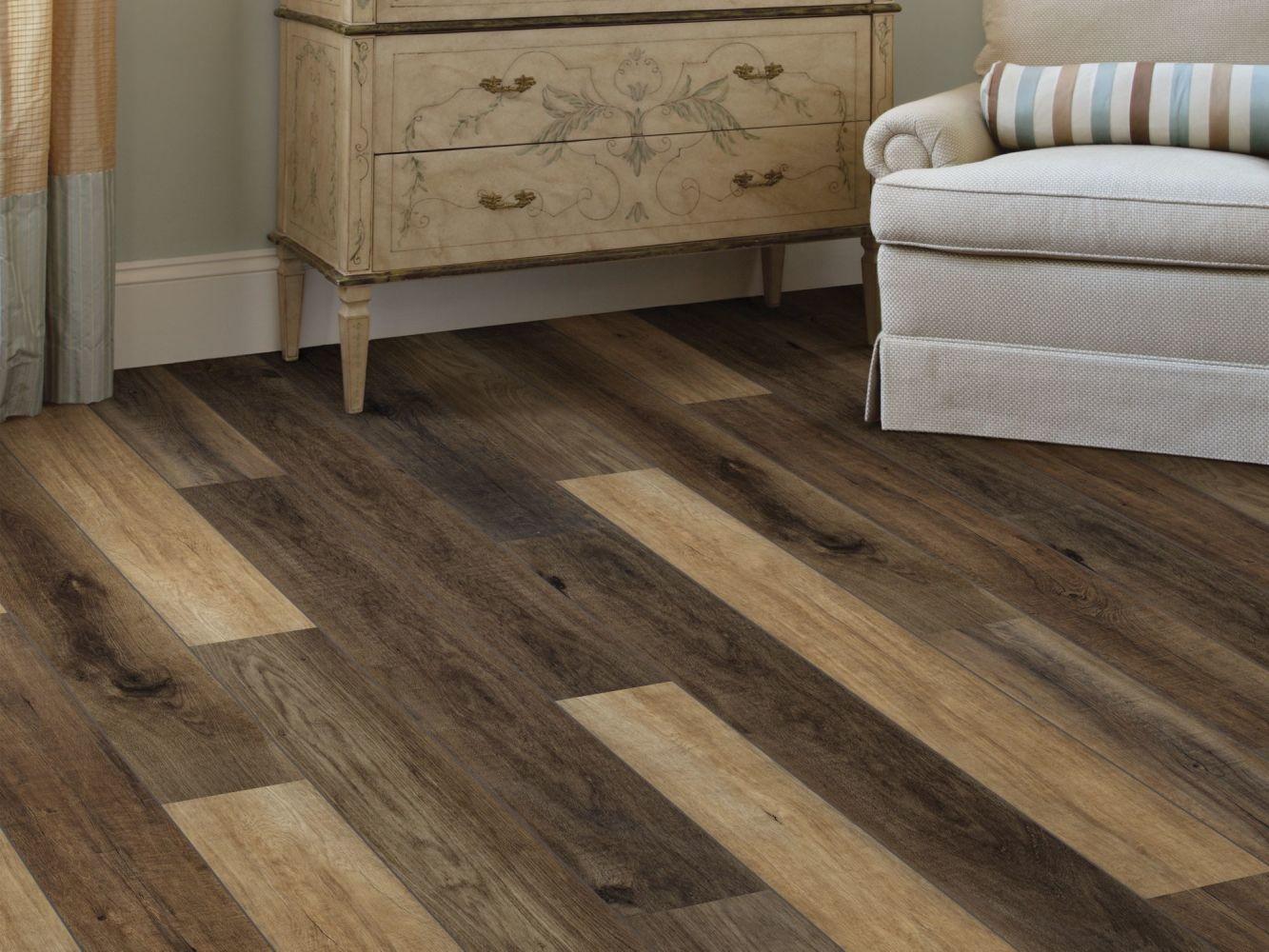 Shaw Floors Resilient Property Solutions Stature Plus Classic Oak 07035_VE371