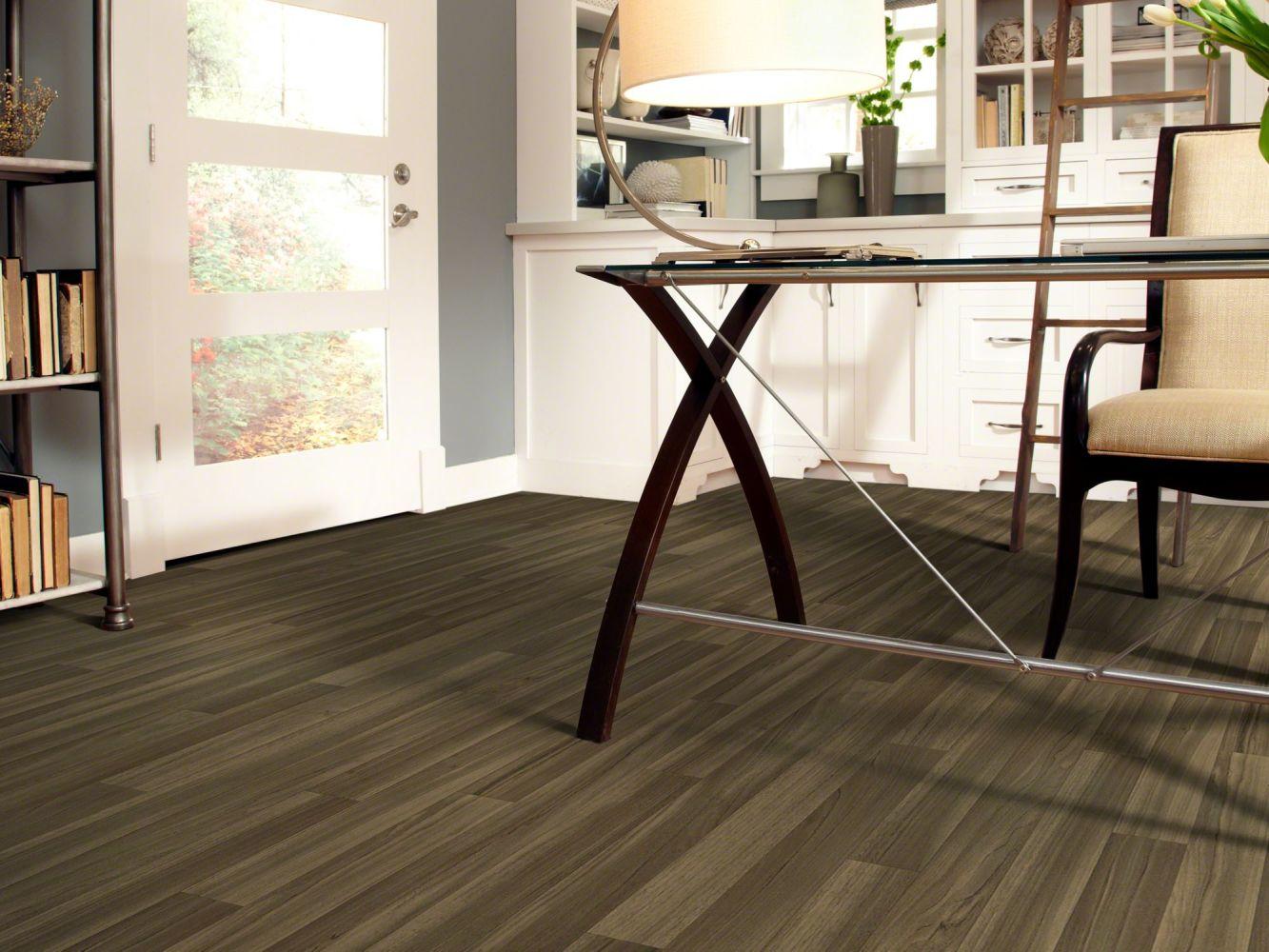 Shaw Floors Resilient Home Foundations Living Quarters Minnesota 00212_VG055