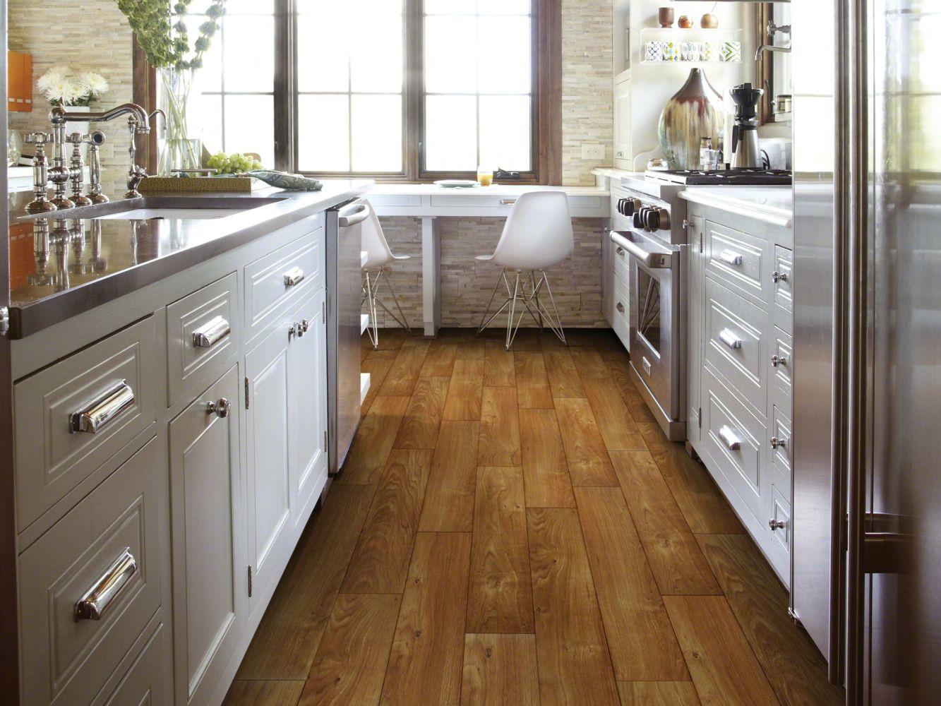 Shaw Floors Resilient Home Foundations Living Quarters Montana 00704_VG055