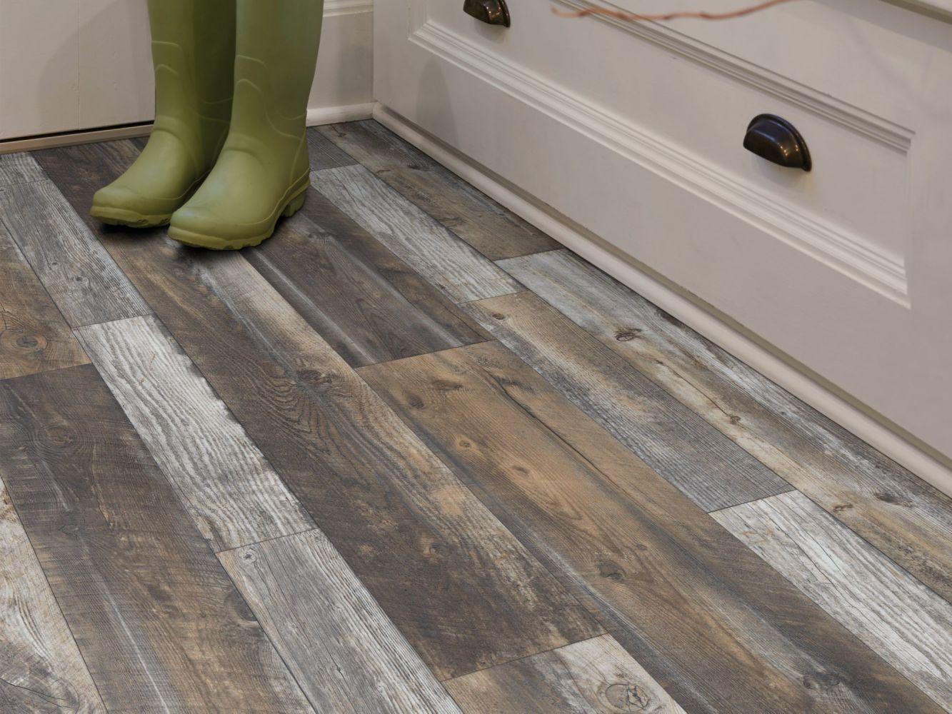 Shaw Floors Resilient Residential Pro 12 II Desert 00746_VG085
