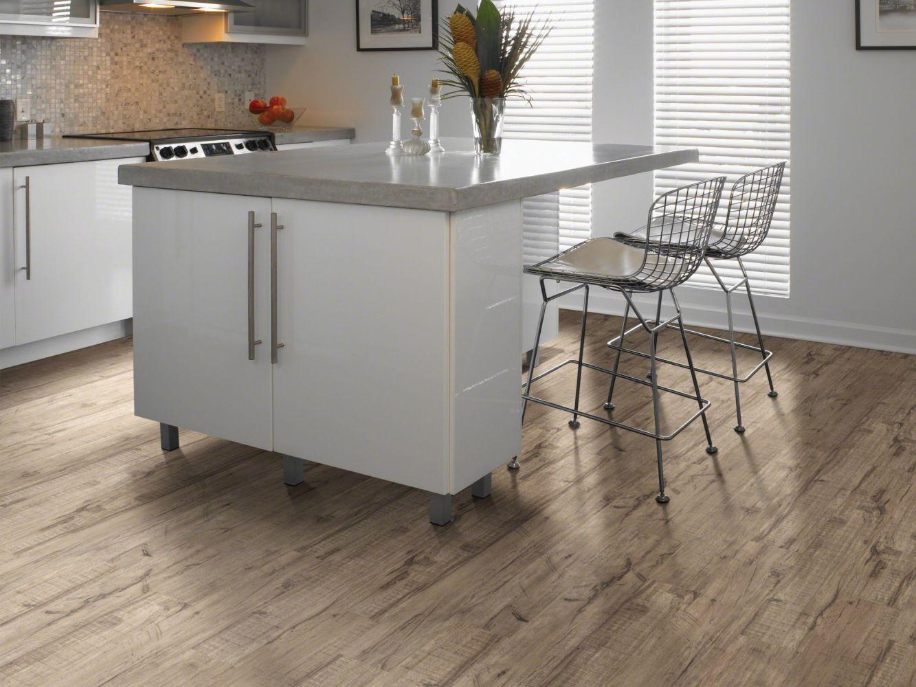 Shaw Floors Nfa HS Take It Easy Sagebrush 00542_VH509
