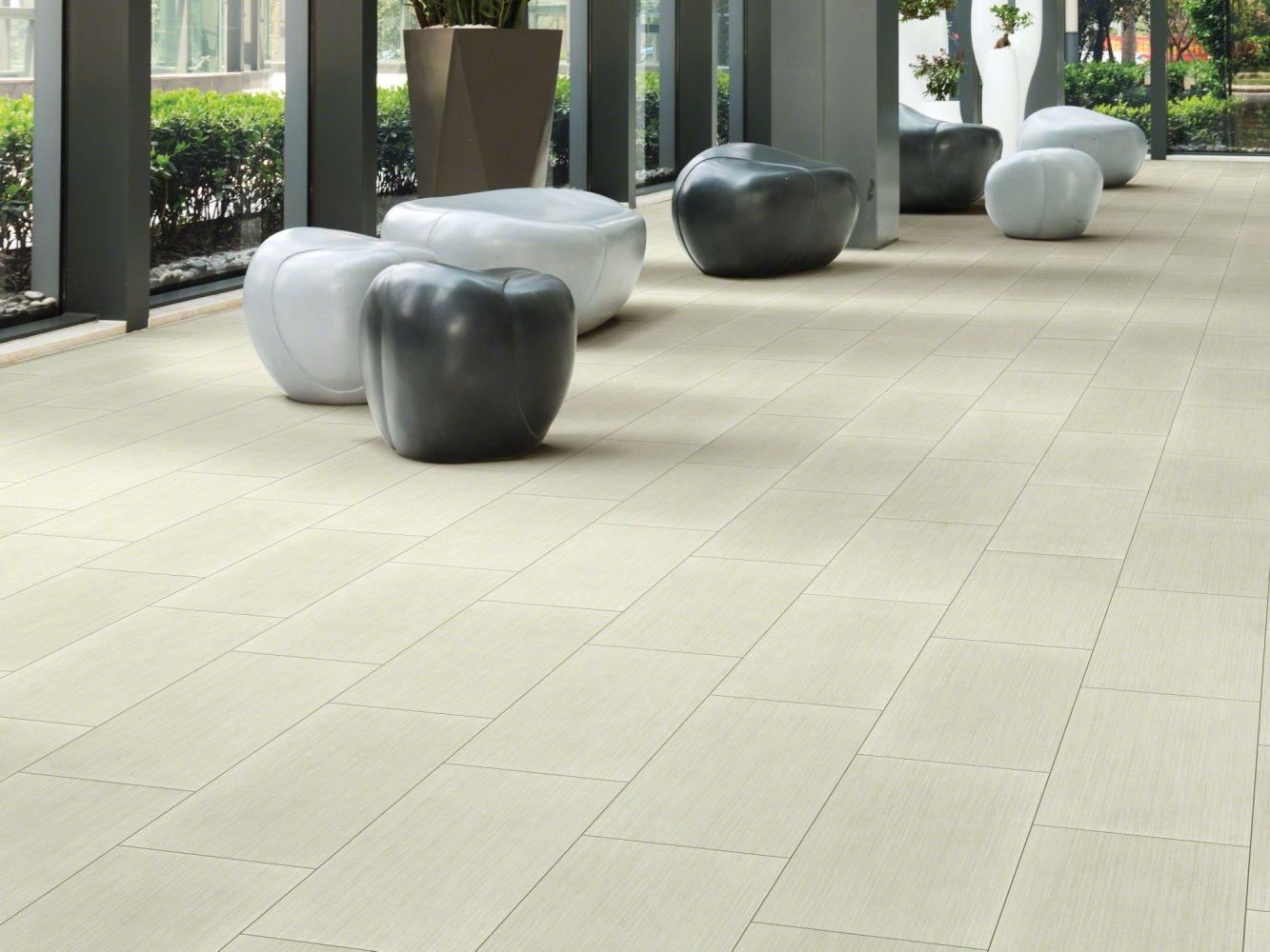 Shaw Floors Nfa HS Beaver Creek Tile Arid 00162_VH546