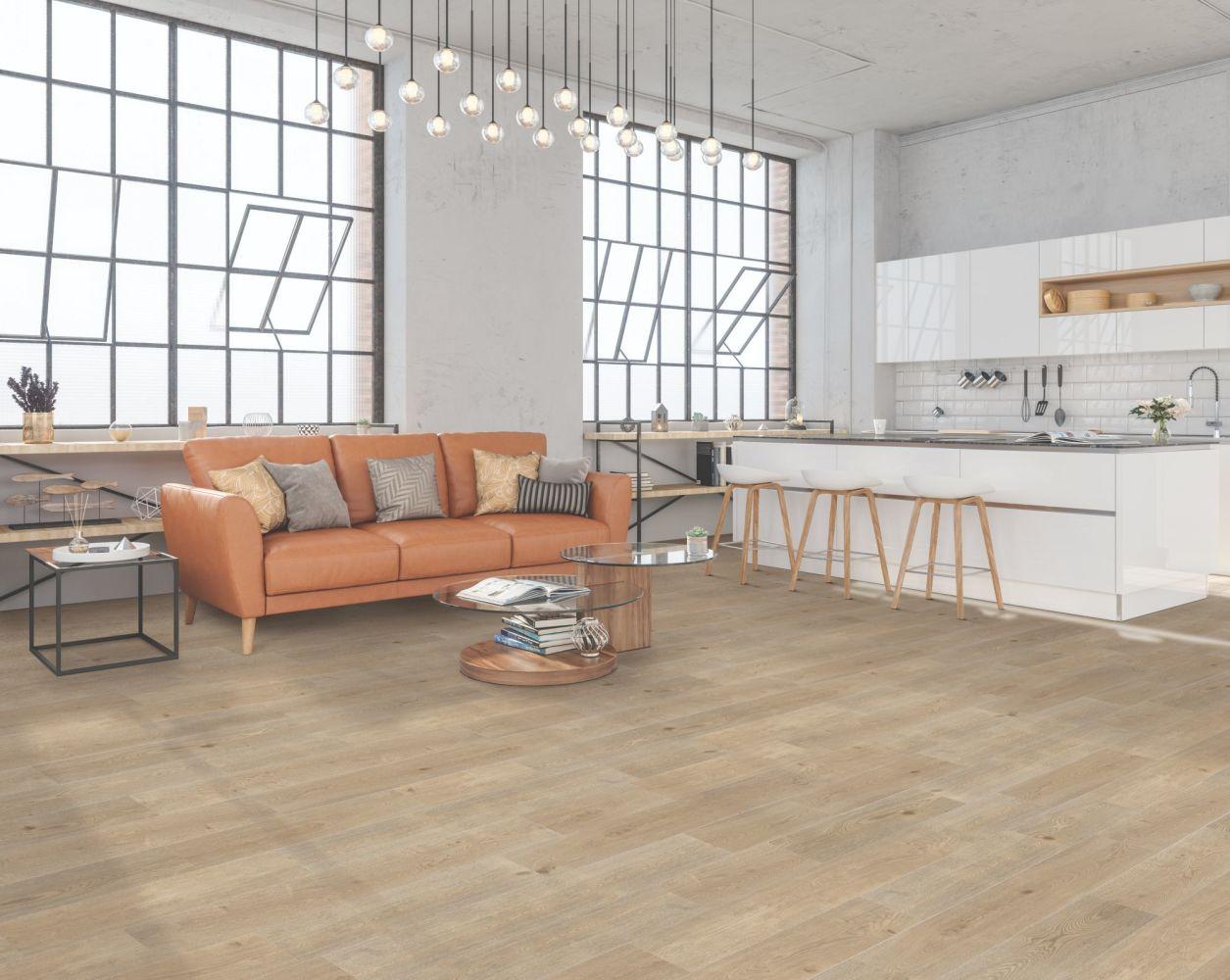 Resilient Residential COREtec Advanced+ Skillman Oak 08004_VV675
