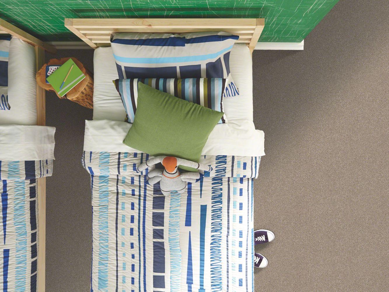 Shaw Floors Roll Special Xv931 Cocoa 00712_XV931