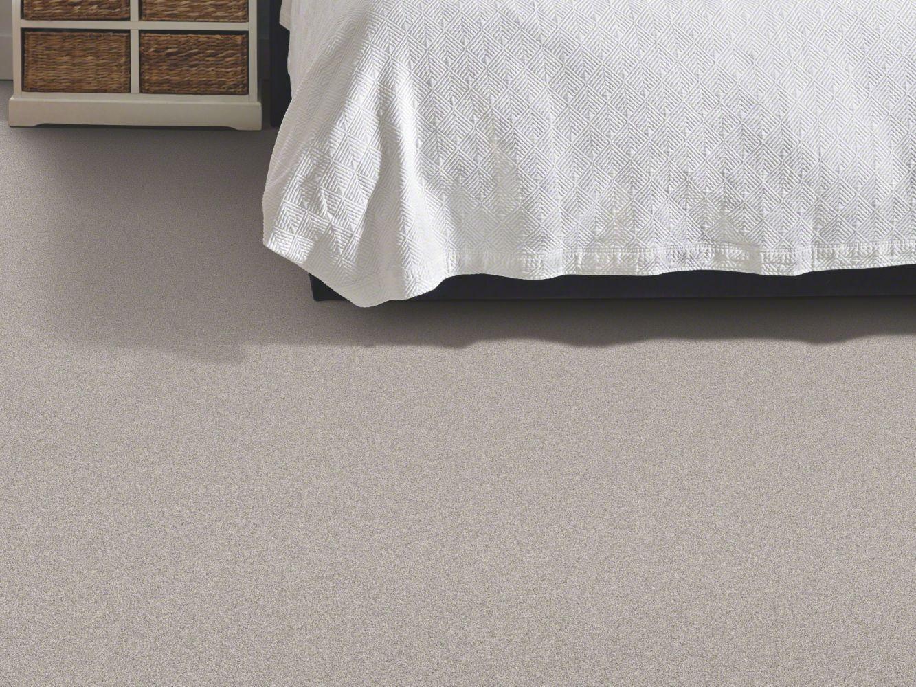 Shaw Floors Value Collections Xz010 Net Stone Path 00503_XZ010