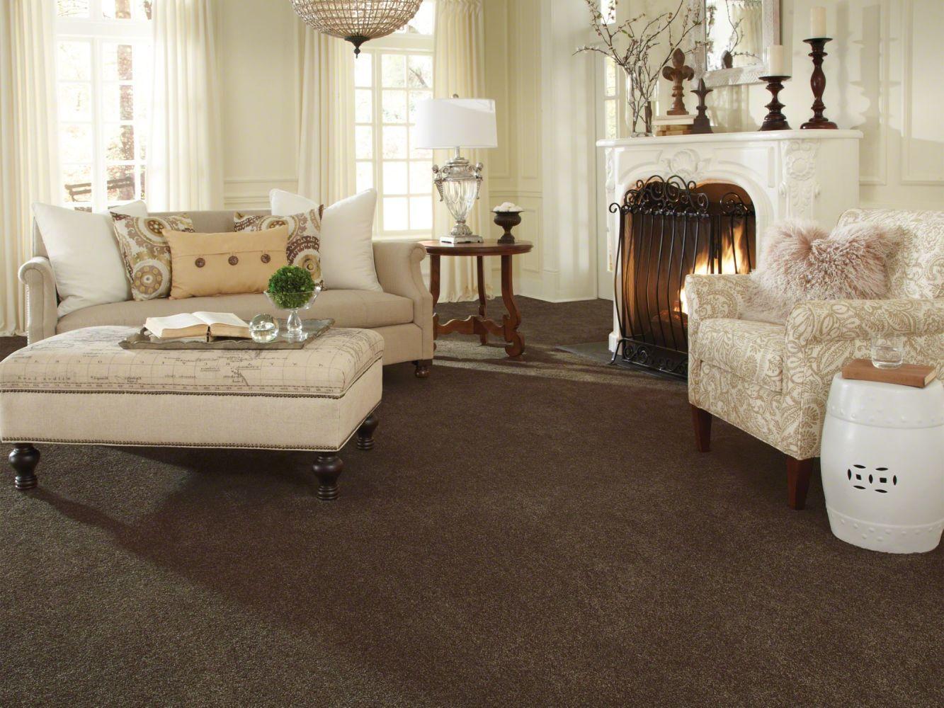 Anderson Tuftex American Home Fashions Luna Park Rich Cocoa 00779_ZA873