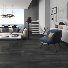 Dolphin Carpet & Tile CLIPS Black PRCLIBLA8X48